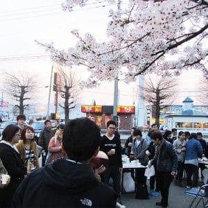 綺麗な桜の下での親睦会となり、より会話が弾みました。